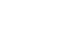 Mgruppen Executive MBA - logotype (vit entrance)